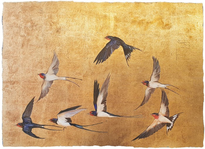 JM4102-Jackie-Morris-Golden-Flight-of-Swallows-signed-limited-edition-print