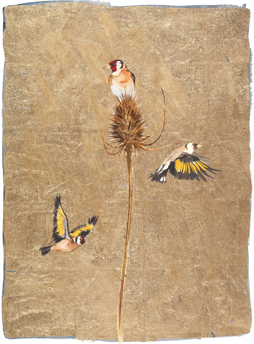 The Lost Words - Jackie Morris - Goldfinch - SIgned Limited Edition Print