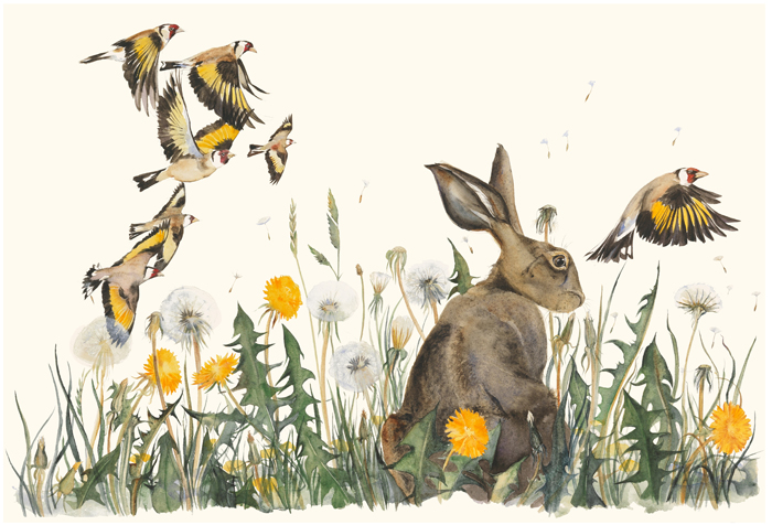 The Lost Words - Jackie Morris - Robert Macfarlane - Dandelion - Signed Limited Edition Prints