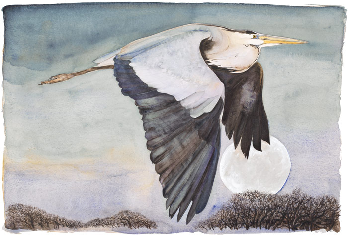 The Lost Words - Jackie Morris - Robert Macfarlane - Heron in Flight - Signed Limited Edition Print