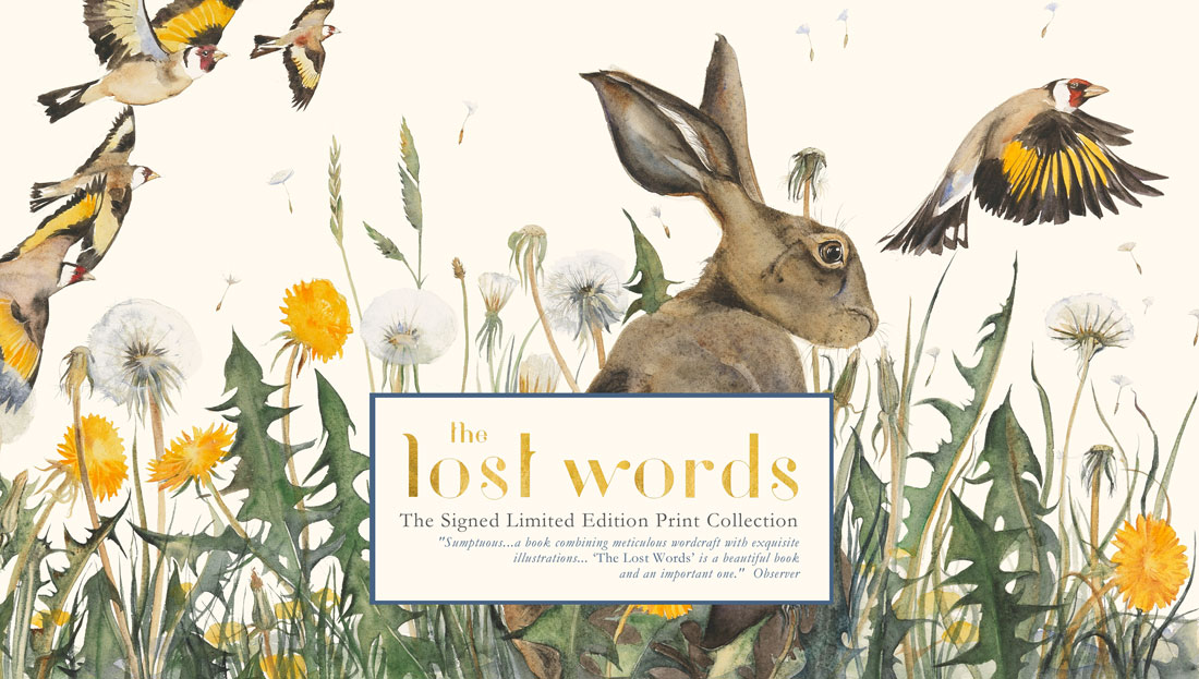The Lost Words Jackie Morris Robert Macfarlane