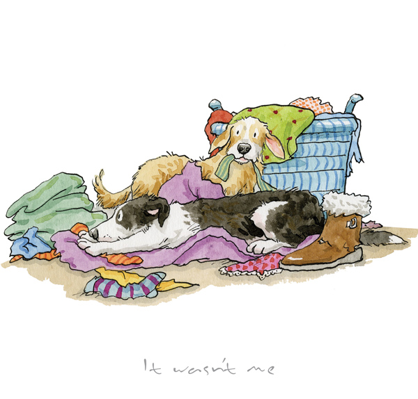 Anita Jeram - It wasn't me!