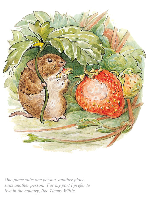 Beatrix Potter - Tale of Johnny Town Mouse
