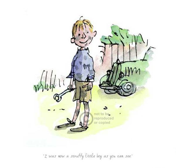 Roald dahl boy book report