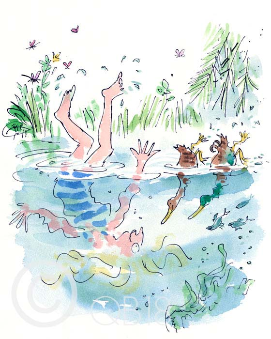 Quentin Blake - D is for Ducks - Collectors Edition Print